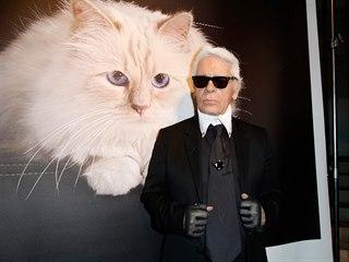 Modrooká chlupatá slečna jménem Choupette je pravděpodobně nejbohatší kočkou...