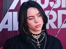 Billie Eilish, vlastním jménem Billie Eilish Pirate Baird O'Connell, si...