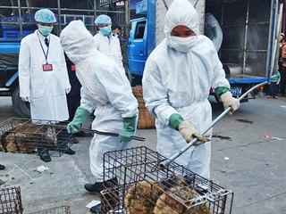 Čína v rámci zamezení šíření koronaviru přistoupila k zákazu obchodu s volně...