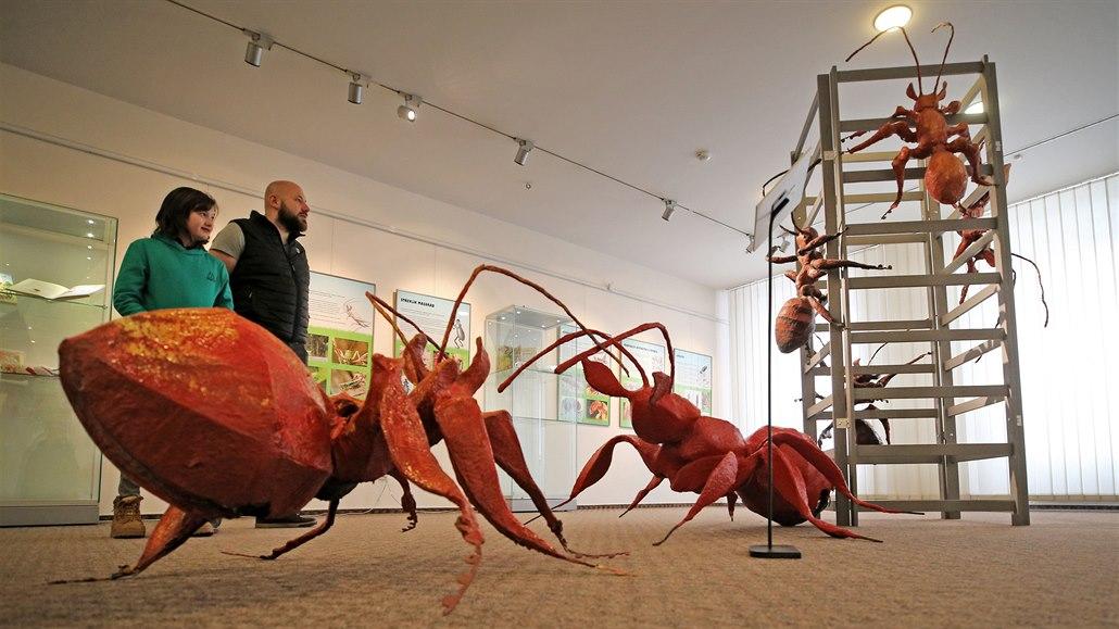 Na jihlavské výstavě upoutají návštěvníky obří plastiky mravenců, které na...