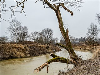 Vodohospodáři vrátí tok Orlice do slepého ramena Jordánu poblíž Petrovic (22....