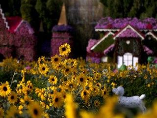 Zázračná zahrada nazývaná též Zahrada divů