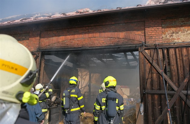 Při sobotním požáru stodoly na Opavsku nepřežilo třináct býků