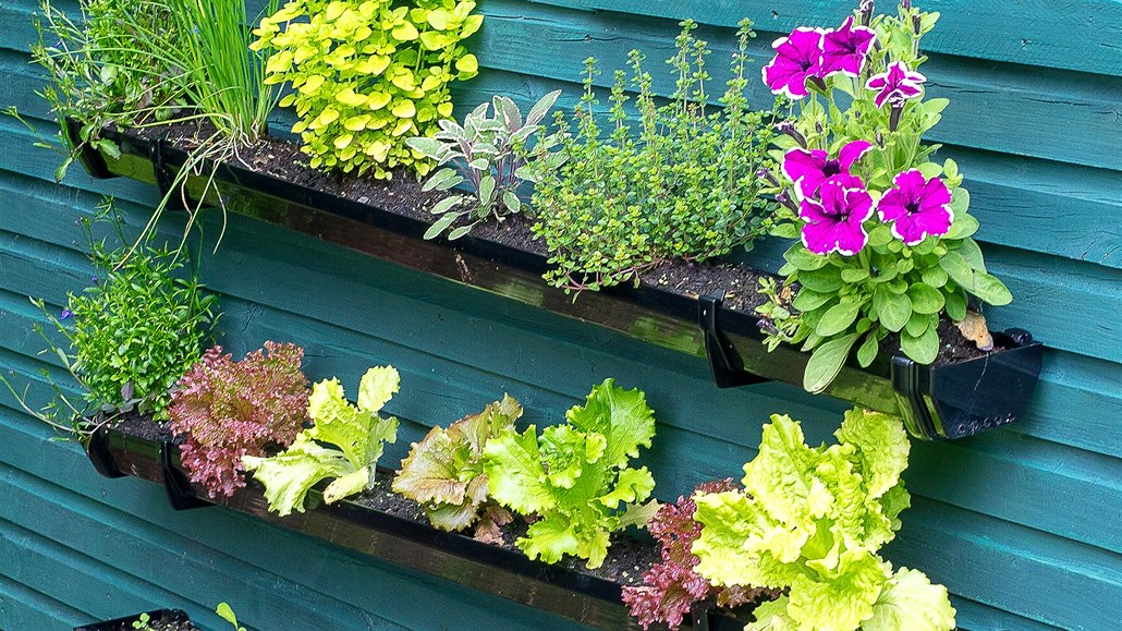 Zkuste si vertikální bylinkovou či salátovou zahradu vyrobit z okapu