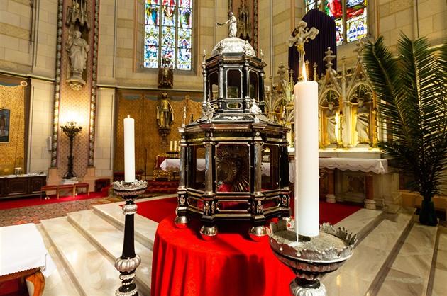 Církev nasadila proti viru sv. Pavlínu, před staletími pomohla od moru