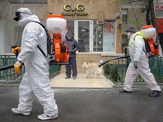 Pracovníci dezinfikují ulice v rumunské Bukurešti. (31. března 2020)