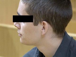 Vrah R. P., který v necelých třinácti letech zavraždil v Kmetiněvsi svoji...