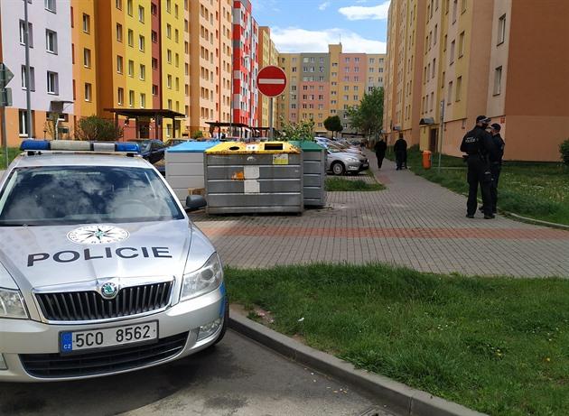 K incidentu došlo v ulici V. Volfa na českobudějovickém sídlišti Máj.