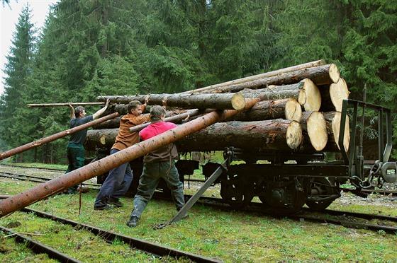 Dřevo se tu dříve sváželo právě po železnici.