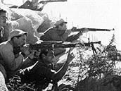 Židovské milice Hagana