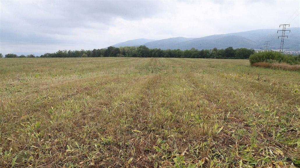Další desetitisíce metrů zeleně u Ústí mají pohltit obří skladovací haly