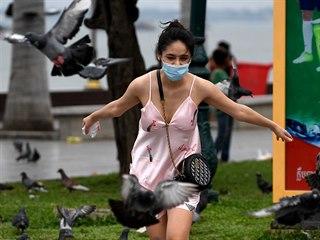 Kambodžanka s rouškou si hraje s holuby. (17. dubna 2020)