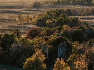 Po zániku sovětských kolchozů byly obrovské plochy polí a pastvin ponechány...