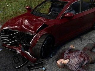 Accident: The Pilot