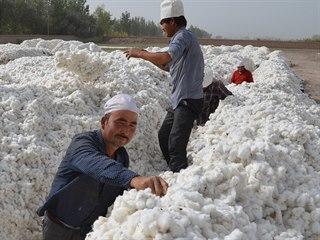 Čínští ujgurští pracovníci suší bavlnu v Alaru. (15. září 2015)