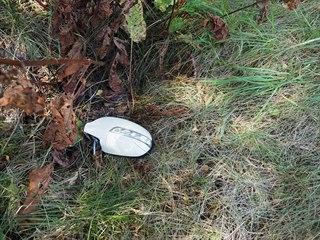 Chodkyni při dopravní nehodě poblíž Žalmanova na Karlovarsku zasáhlo zrcátko...