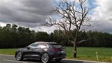 Suché stromy u silnic silničáři moc neřeší. Do silnic přitom padají celé větve, zbytečně ohrožují řidiče
