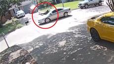 Agresivní pes zahnal muže přímo pod kola auta