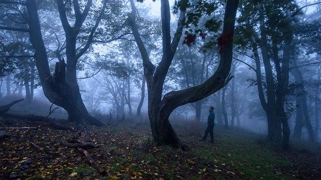 Mlhavé ráno na vrcholu Sedlo