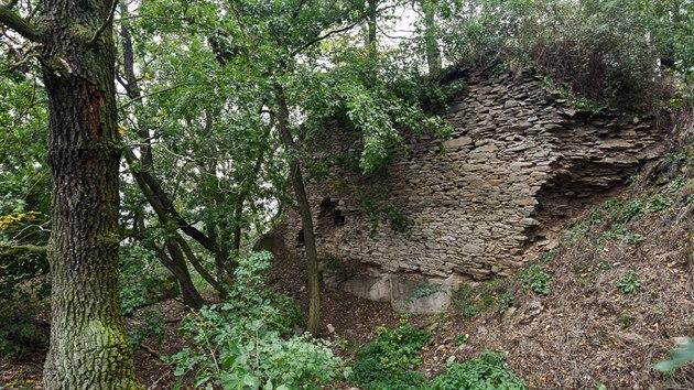 Zbytky hradu Litýš