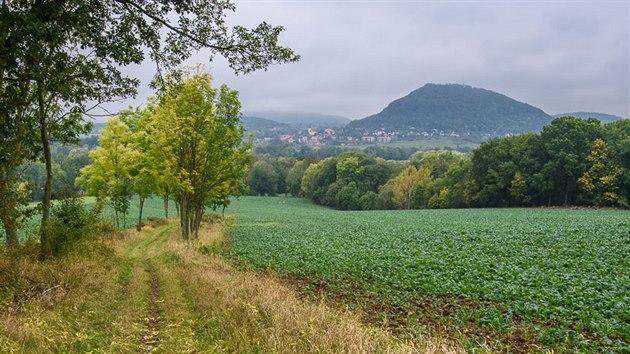 Cesta kTřebušínu. Vpravo je vrch Kalich.