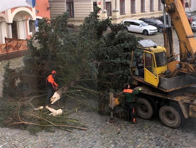 Na náměstí Svornosti v Českém Krumlově přivezli nejdříve smrk pichlavý. Jenže ten se při usazování zlomil.