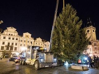 Na pražském Staroměstském náměstí stojí vánoční smrk. Pochází z Kamenného...