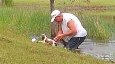 Muž rukama vyrval svého psa ze chřtánu krokodýla