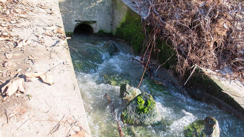 V Bečvě se zase objevilo znečištění, možná pochází z čistírny odpadních vod