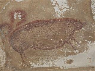 Archeologové v Indonésii objevili nejstarší známou jeskynní malbu. (14. ledna...
