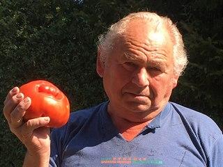 Gigantické rajče