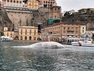 Italská pobřežní stráž u přístavu Sorrento nedaleko Neapole našla tělo...