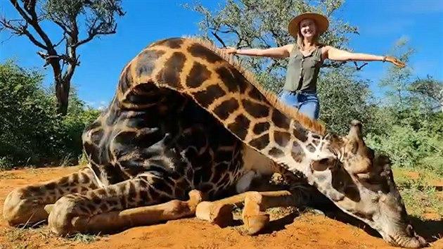 Žena pózovala před objektivem se srdcem zastřelené žirafy