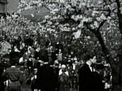 Brňané se radují z rozkvetlých třešní a Pražanům hoří nádraží, psaly před 100...