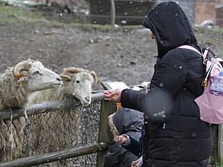 Jihlavská zoologická zahrada se otevřela po 115 dnech návštěvníkům. I když...