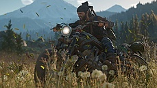 Days Gone na PC