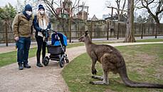 Do Zoo Praha smí 4000 lidí naráz. Prošli jsme ji