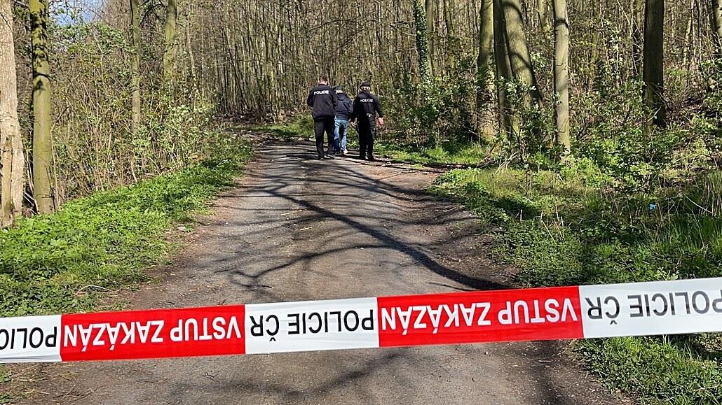 V Kladně spadl strom na sedmiletého chlapce. Převezli ho do nemocnice