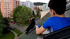 Malý chlapec se spřátelil s volně žijící vránou
