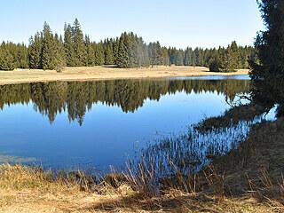 Huťský rybník u Nové Knížecí Hutě. Také zde v minulosti stávala sklářská osada.