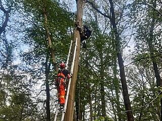 Ornitolog s lezeckým vybavením uvázl zhruba v desetimetrové výšce. Dolů mu...