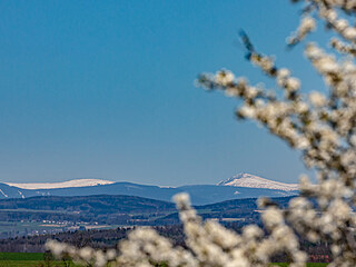 Na Sněžce dosud leží sníh, v Hradci Králové už kvetou stromy (27. 4. 2021).