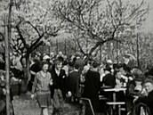V Československu bylo před 100 lety vedro. Nervózní z toho byli i koně