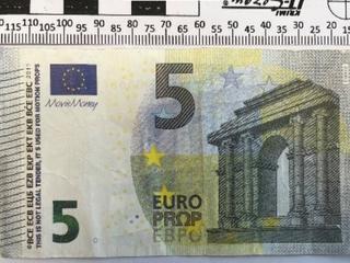 Někdo platí falešnými bankovkami hlavně v okresech České Budějovice, Český...