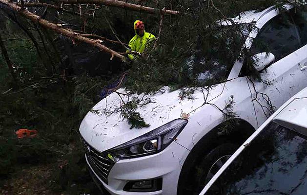 Popadané stromy, zatopené sklepy. Bouřky odřízly 6 tisíc domácností od proudu