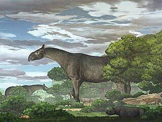 Umělecká rekonstrukce obřího nosorožce Paraceratherium linxiaense, žijícího...