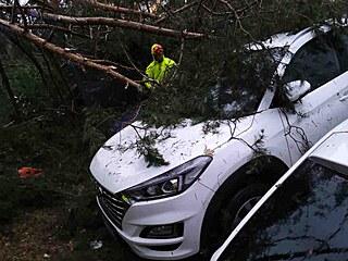 Hasiči v Jihomoravském kraji kvůli bouřkám nejčastěji vyjížděli k popadaným...