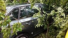 Při bouřce na Písecku zemřeli v autě dva lidé, kteří zastavili, aby pomohli schovaným dětem. Ty jsou zraněné