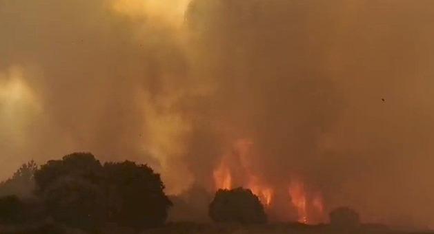 Požáry sužují jih Evropy. Itálie žádá o pomoc Evropskou unii
