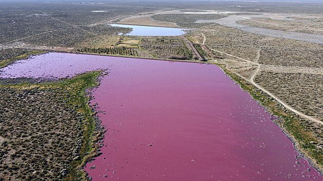 Dvě jezera v Argentině náhle zrůžověla, důvod zatím není známý